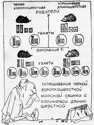Решебник по химии 8 класс кузнецова