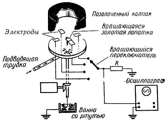 Принципиальная схема модели '